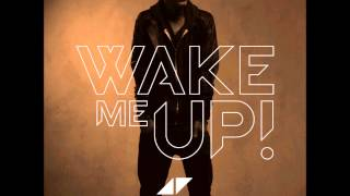 Avicii vs SHM vs Sandro Silva - Don't Wake Puna Up (Mashup)