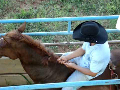 rodeio amador em cavalo CÂNDIDO RODRIGUES
