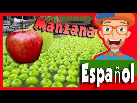 Xxx Mp4 Frutas Para Niños Con Blippi Tour Por La Fábrica De Manzanas 3gp Sex