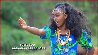 Hot, New Oromo/Oromia Music
