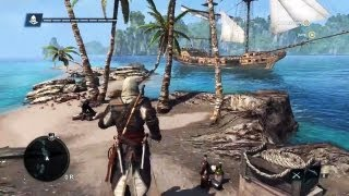 PS4 - Assassin's Creed 4 Open World Gameplay