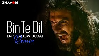 Binte Dil Remix | DJ Shadow Dubai | Padmaavat | Ranveer Singh | Deepika Padukone | Shahid Kapoor