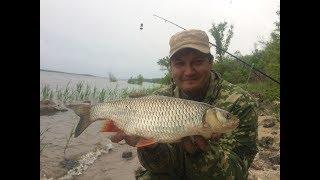 ловля голавля на реке сура