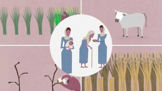 LANSA Film: Women in agriculture in South Asia: the nutrition connection