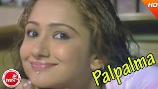 Nepali Hit Movie Palpalma Nepali HD