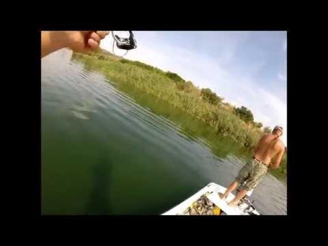 Ebro 2014 Ultra Light Spinning Action HD