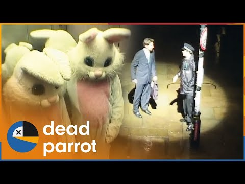Xxx Mp4 Followed By A Spotlight Trigger Happy TV 3gp Sex