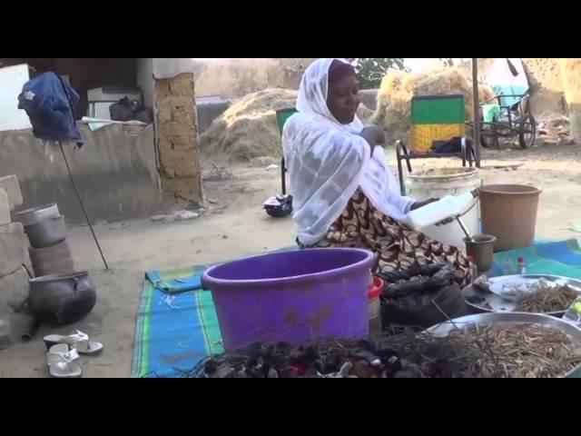 L'Economie e la région e Diffa au Niger asphyxiée par les activités de Boko Haram