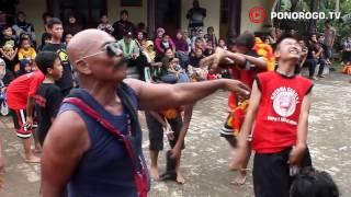 Reog Ponorogo Di Ngrukem Mlarak, Dadak Merak Ngamuk, Aksi Bujang Ganong Kembar, Seru & Lucu
