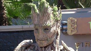 Groot character meet-and-greet at Disneyland
