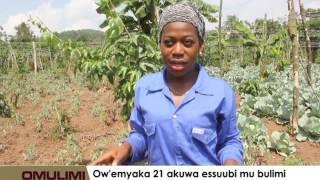 Ow'emyaka 21 okuwa essuubi mu bulimi