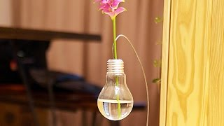 Make a Cute Light Bulb Vase for a Single Flower - DIY Home - Guidecentral
