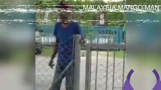 Malaysia indian girls|| troll by mango man ||