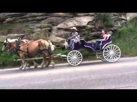 Harse rides