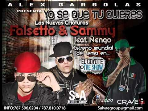Yo Se Que Tu Quieres Ñengo Flow Ft Falsetto & Sammy ►NEW ® Reggaeton 2011◄