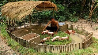 Build Mini Swimming Pool For Wild Pigs Around Build Wild Boar Pigs House