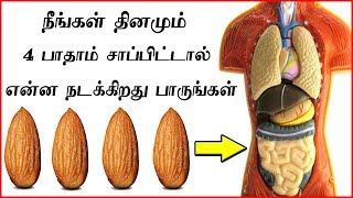 தினம் பாதாம் சாப்பிடுவதால் நிகழும் அதிசயங்கள் | Top Health Benefits of Almonds (Badam)