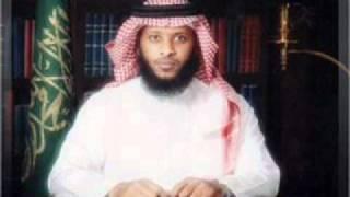الشيخ توفيق الصائغ سورة الرعد .wmv