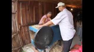 Invenções da agricultura familiar - Círio Beehling, São Lourenço do Sul/RS