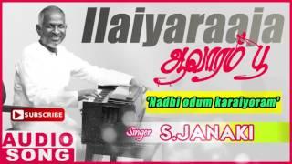 Nadhi Odum Karaiyoram | Tamil Song | Avarampoo | Vineeth | S. Janaki | Ilayaraja | Music Master