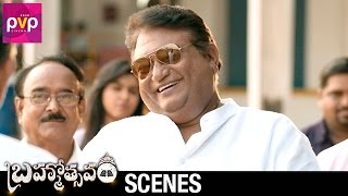 Jaya Prakash Reddy Comedy Scene   Brahmotsavam Telugu Movie   Mahesh Babu   Samantha   Pranitha