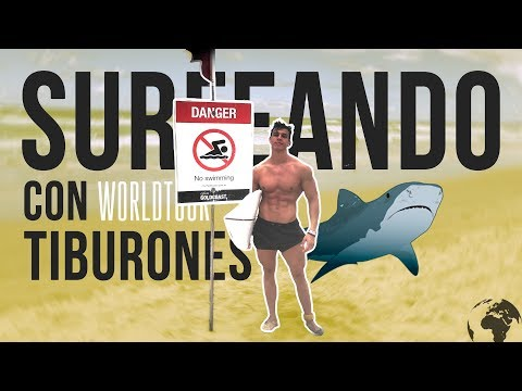 Xxx Mp4 SURFEANDO ENTRE TIBURONES EN AUSTRALIA CHALLENGE Tfbworldtour 3gp Sex