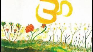 BABAJI SPEECH - Herakhan Vishwa Mahadham