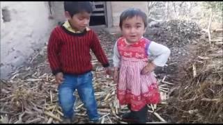 Little Children's Funny singing of  Dhariya Negi Song