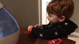 Amazon Alexa Gone Wild!!! Full Version From Beginning To End