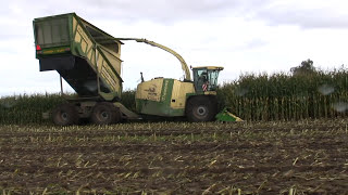 Maishakselen 10-10-2012. Harvesting Maize with a Krone Big X Cargo