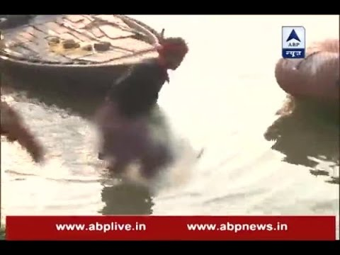 Bihar Boat Tragedy: Visuals of NDRF teams conducting search and rescue operations