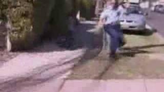 Kangaroo runaway from police and wildlife rescuers
