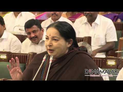 CM Jayalalitha Makes Fun of DMK at TN assembly - Dinamalar