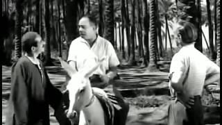 Ismail Yassine Comedy Film : إسماعيل ياسين في الفيلم ا