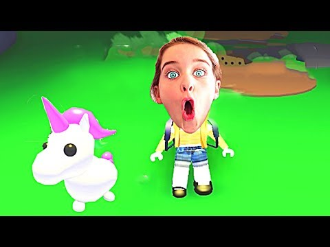 WHICH NORRIS NUT FINDS THE RAREST PET in Roblox Gaming w The Norris Nuts