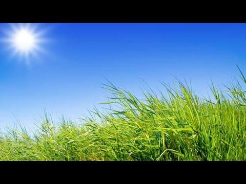 Xxx Mp4 Sunny Hot Dry 3gp Sex