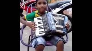 Criança sanfoneira