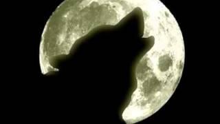Italobrothers - Moonlight Shadow ( Dan Winter Radio Edit )
