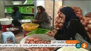 Iran Vegetable harvest & packaging workshop, Roudsar county برداشت سبزي و بسته بندي رودسر ايران