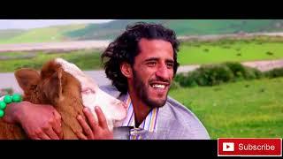 Parodie - Ghazali _saad lamjared ( himari EXCLUSIVE Music Video) | 2018 | حماري فيديو كليب حصرياً