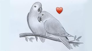 Two parrots in love by pencil sketch