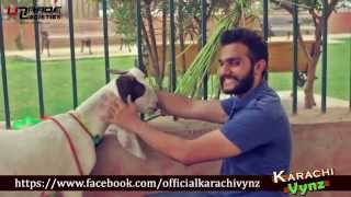 Things Not To Do On BAKRA EID By Karachi Vynz Official