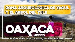 Zona Arqueológica de Yagul y El Arbol del Tule -OAXACA