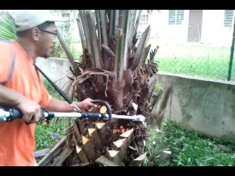 Oil palm pruner oil palm harvesters Mesin Kelapa Sawit MORI 03