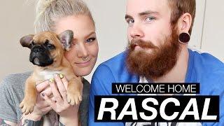 Welcome Home Rascal ♥   Katrin Berndt