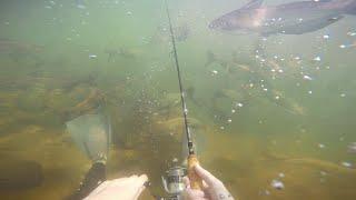 FISHING UNDERWATER CHALLENGE!