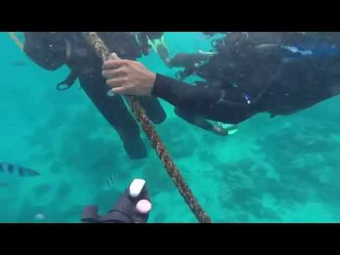 Diving @ blue bay / Mauritius -- GoPro Video