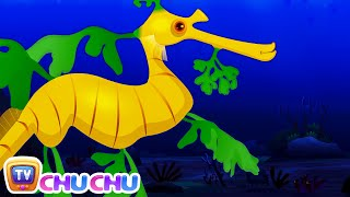 Leafy Sea Dragon Nursery Rhyme | ChuChuTV Sea World | Animal Songs & Nursery Rhymes For Children