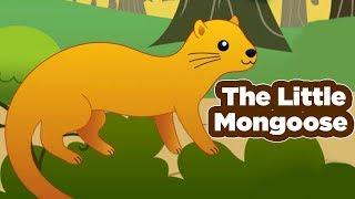 Swami Vivekananda Tales | The Little Mongoose | Hindi Animated Stories | Masti Ki Paathshala