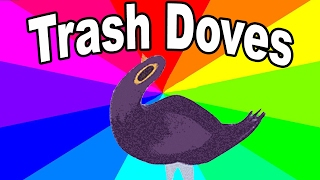 What is the trash dove? The history and origin of the facebook bird meme explained